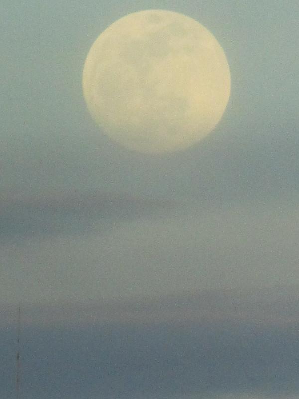 Apareció una luna