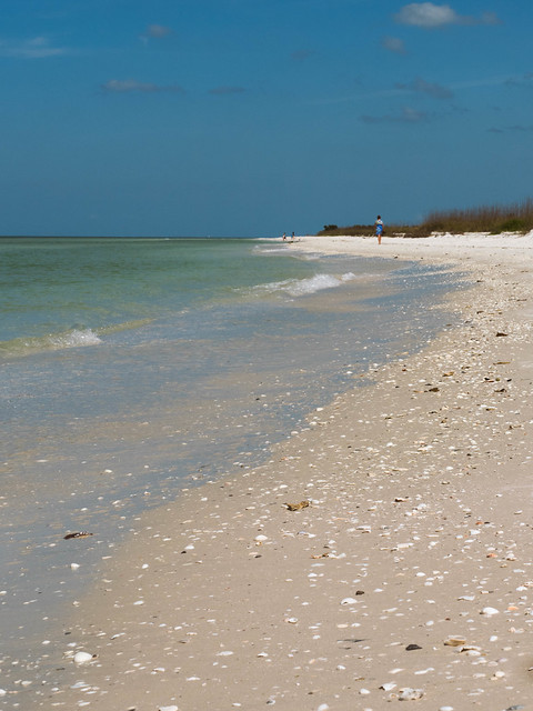 Marco Island Weather In December