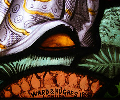 Ward & Hughes 1881