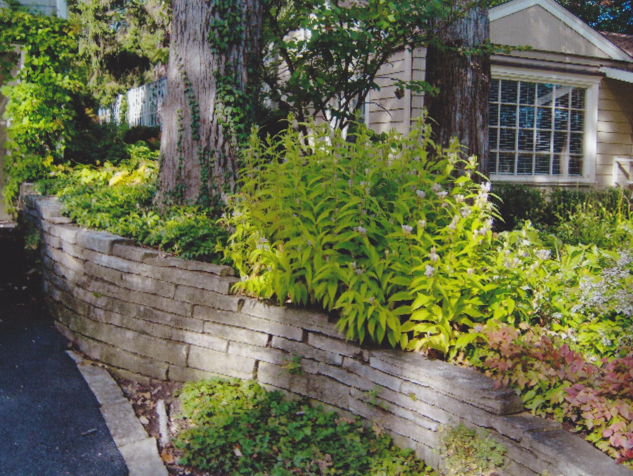 Moore Garden