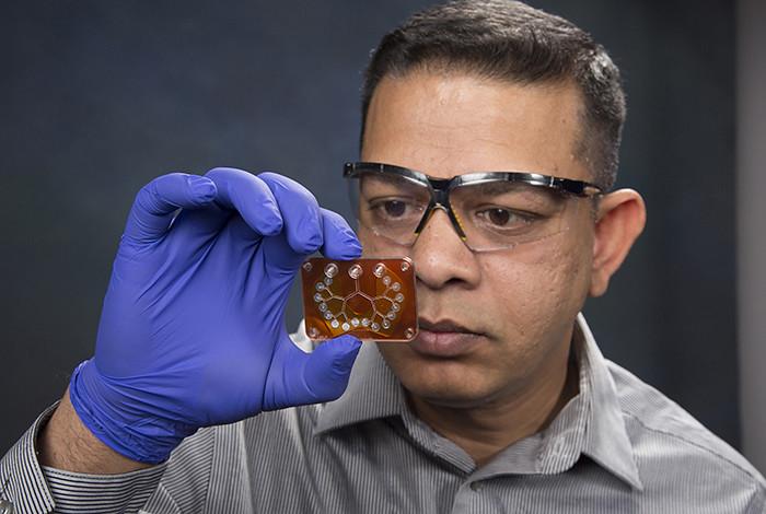 Pulak Nath, of Los Alamos National Laboratory, holds the Pulmonary Lung Model (PulMo).