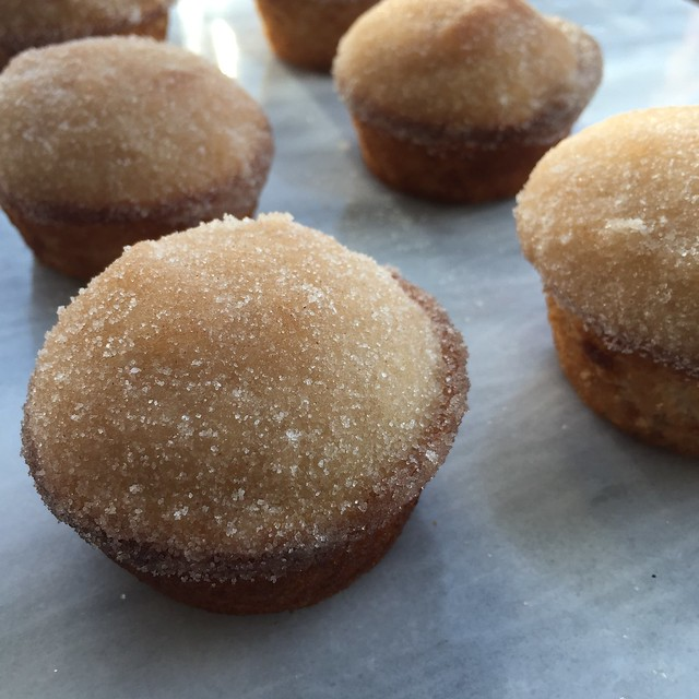 Churro muffins on twothirtyate.com