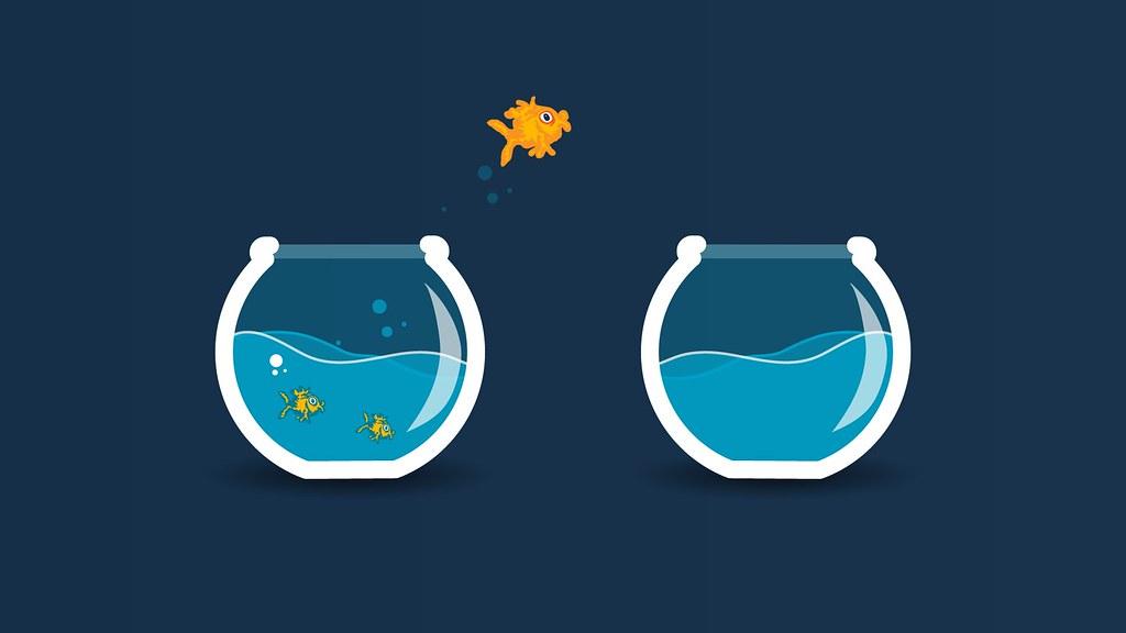 Fish Bowl Fish Tank Aquarium Goldfish Jump Free To Use Und Flickr