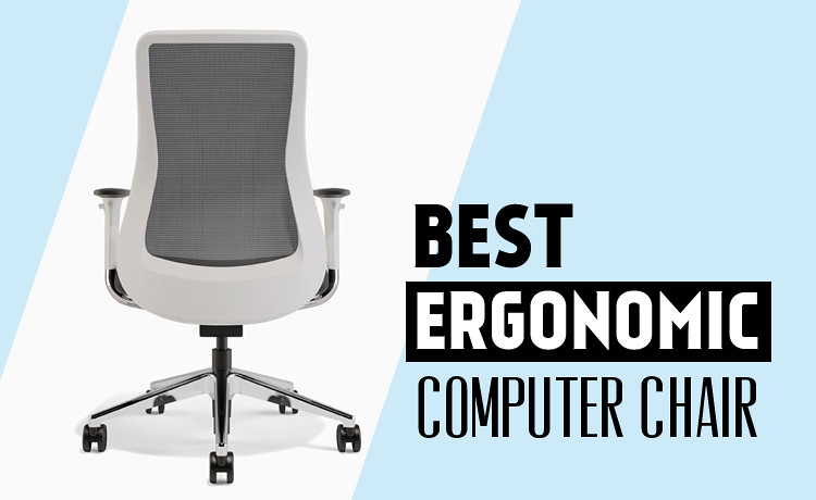 Best Ergonomic Computer Chair Choose The Best Ergonomic