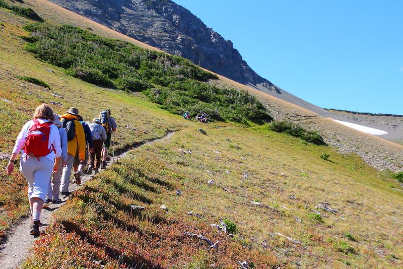 IMG_8390 Ranger-Led Firebrand Pass Hike, Glacier National Park