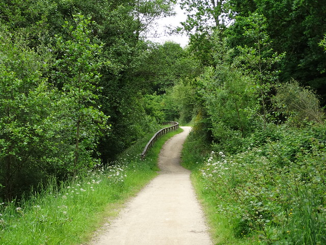 Paseo en el Ruta dos Ríos de Cambre