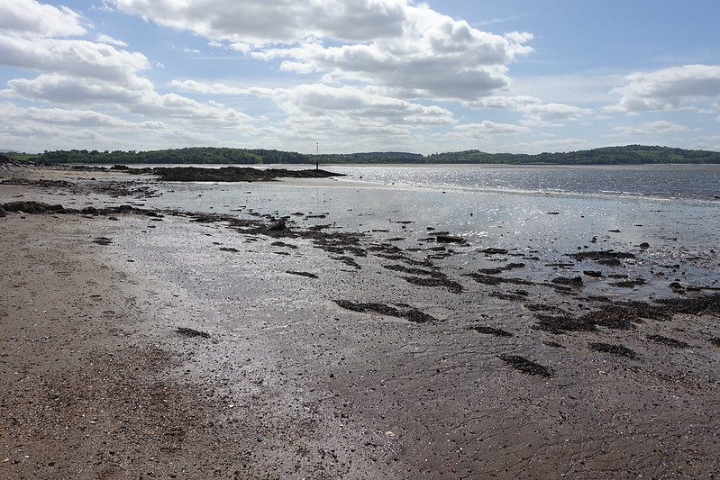 Cramond Island, 25 May 2015 093