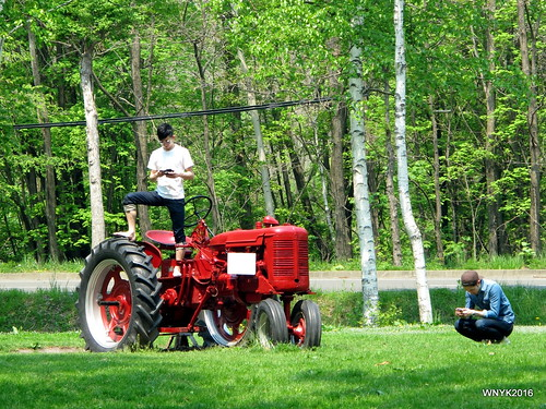 King of Tractors