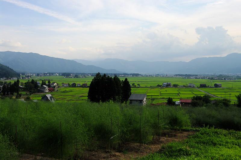 田園風景_2016-07