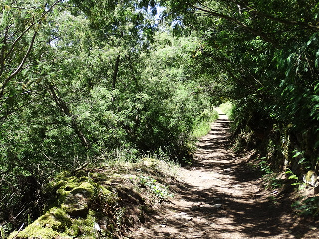 Sendero en la Ruta de Augacaída - Castro de Marce