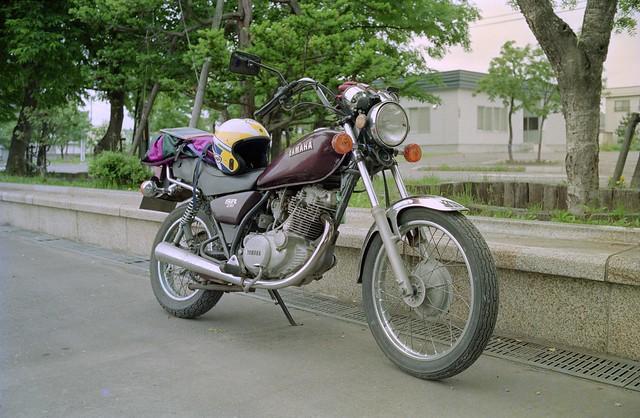 IMGC0233-03