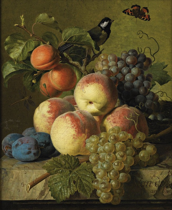 Jan Frans van Dael - Still life of peaches, grapes and plums on a stone ledge with a bird and butterfly