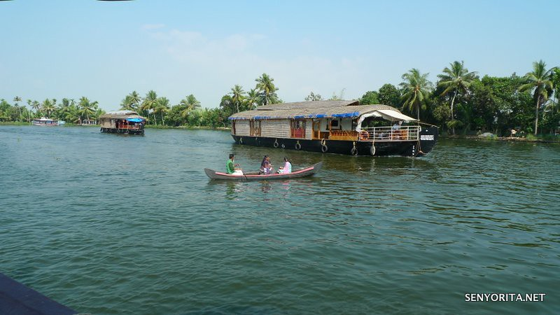 Cruising along the Backwaters of Kerala in India