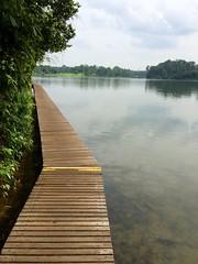 Lower Peirce reservoir forest park