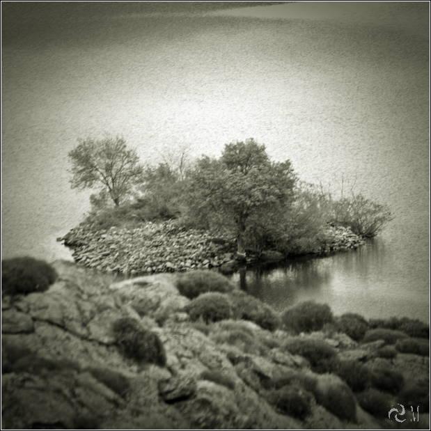 04 - isla de las moras ribadelago 035tn08