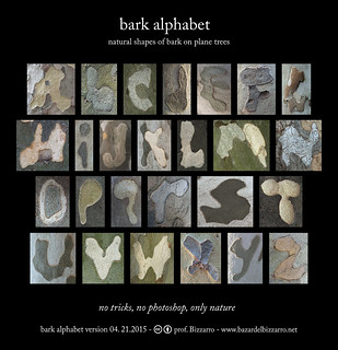 bark alphabet-04.21.2015 | by Bazar del Bizzarro