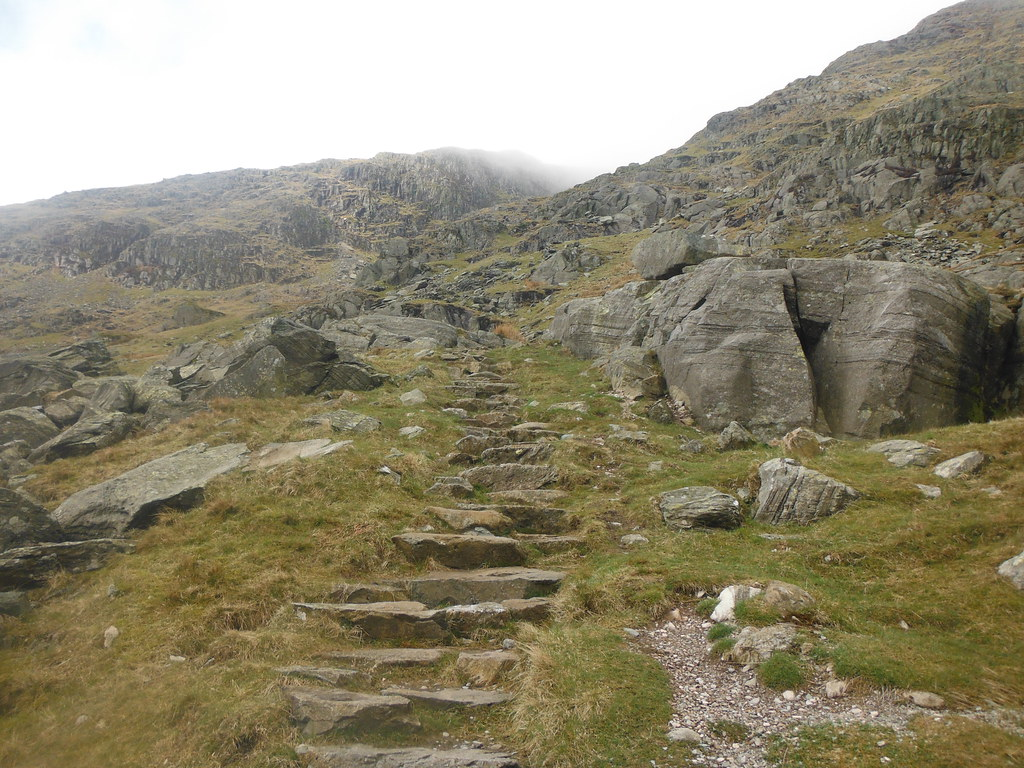 Climbing Redscrees 1