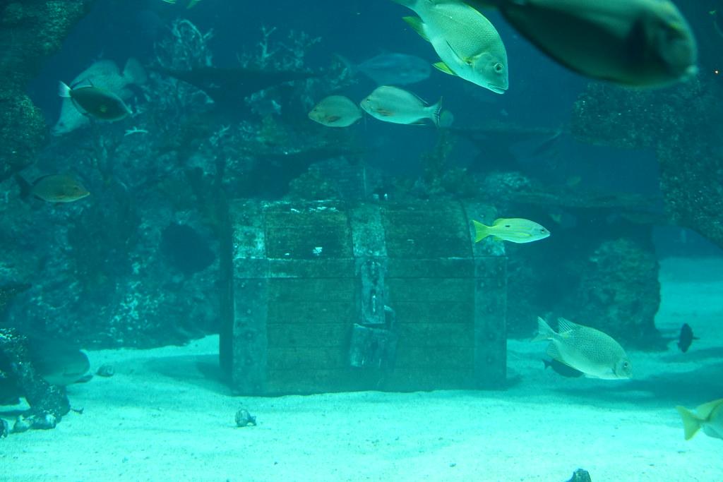 underwater treasure chest ben ho sg flickr