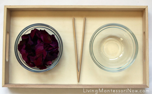 Flower Petal Transfer Tray with Toast Tong