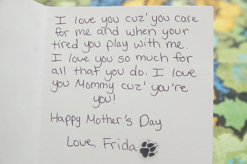 125/365. frida came home with a mother's day card from doggie day care. II.