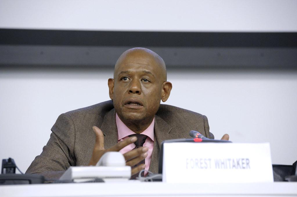 UNESCO Goodwill Ambassador - Wikipedia