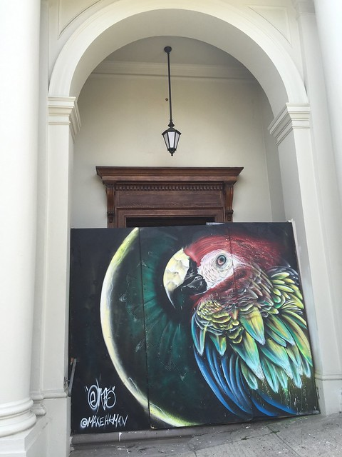 Parrot urban art, Mission Dolores