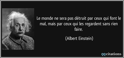 citation albert e.