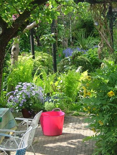 Garden love my garden kaylovesvintage flickr for Gardening is my passion