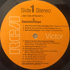 RAGNI,RADO,MACDERMOT:DISINHAIRITED(LABEL SIDE-A)