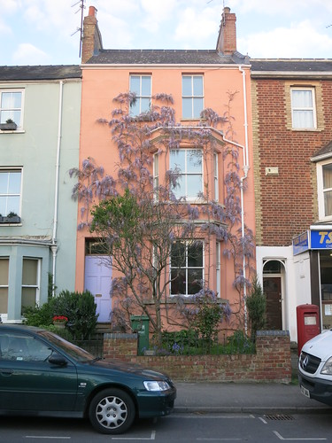 the pink wisteria house