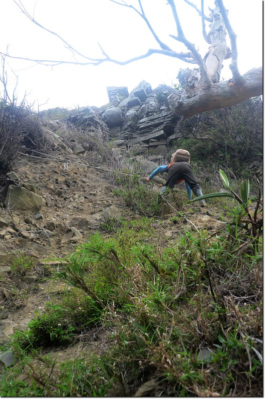 虎頭山登山途中崩塌地形 4