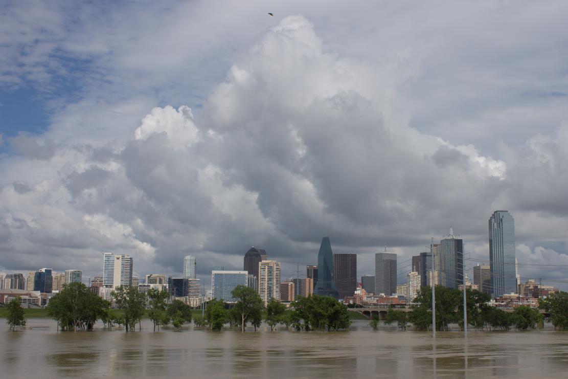 Flood 42