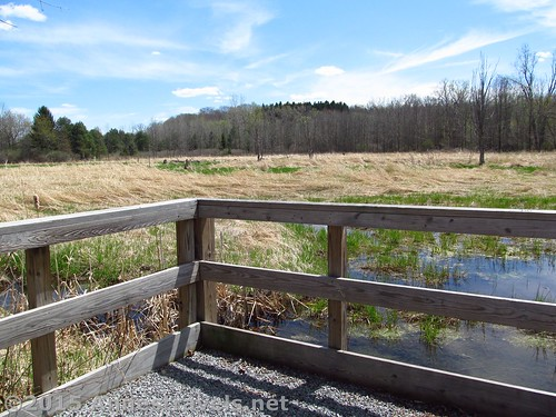 A little viewpoint out over the swamps, west of Mendon Park along the Lehigh Valley Trail, New York
