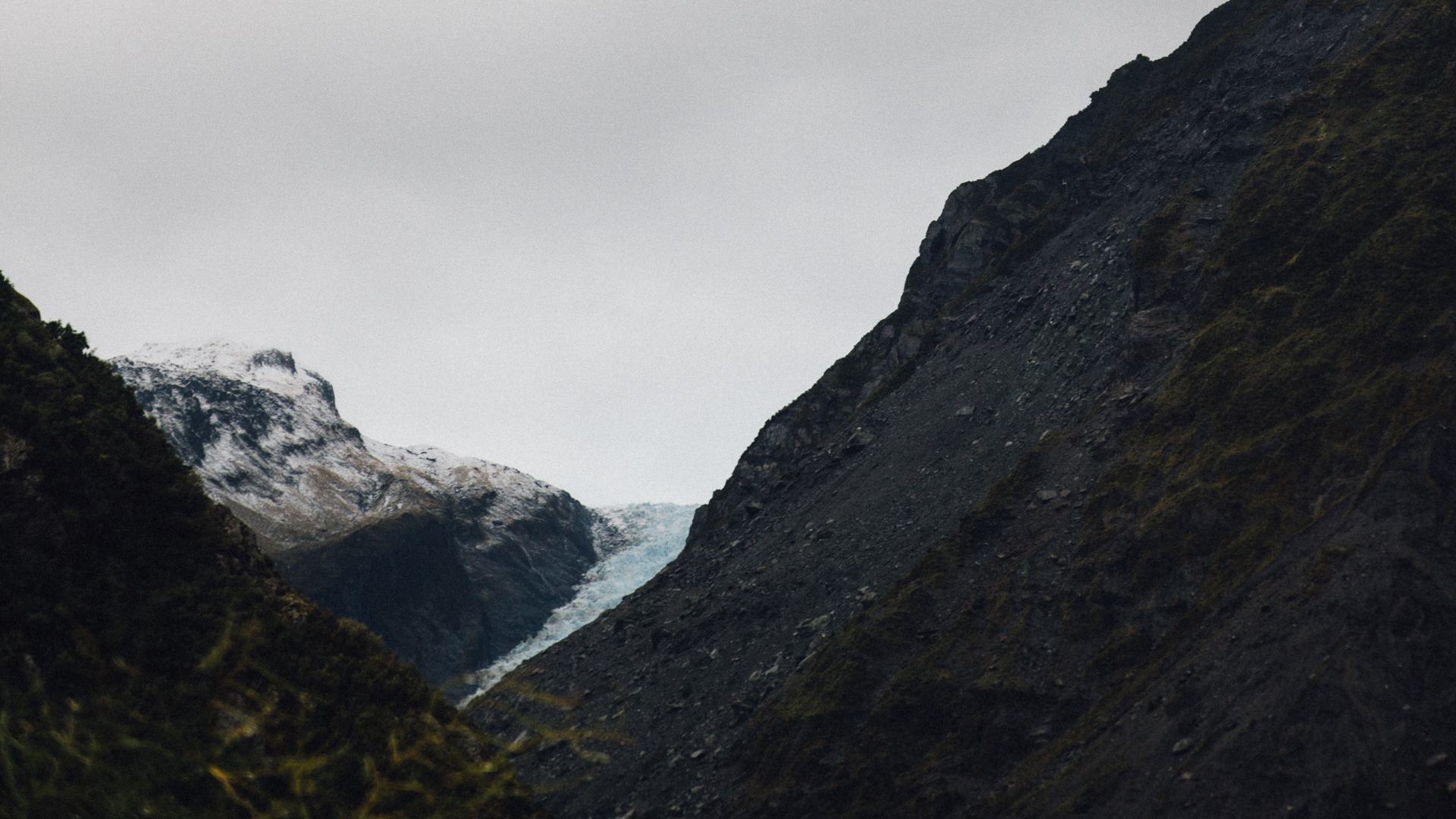 South Island, New Zealand - Fox Glacier