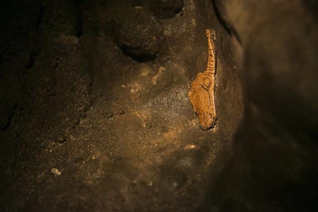 MUPAC- Museo de Prehistoria y Arqueología