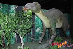 «Шоу динозавров»