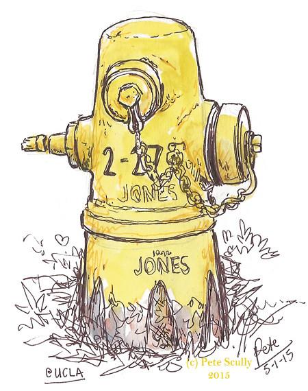 hydrant UCLA