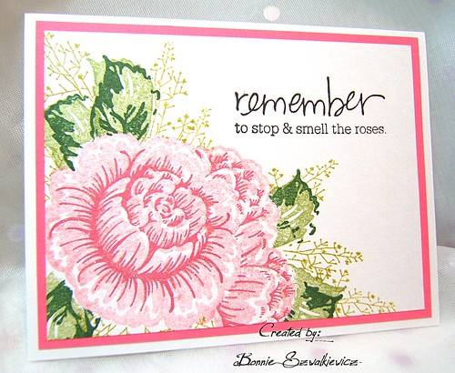 2015-05-21 (4) Regal Rose