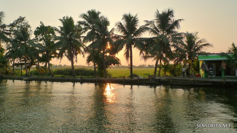 Cruising the Kerala Backwaters