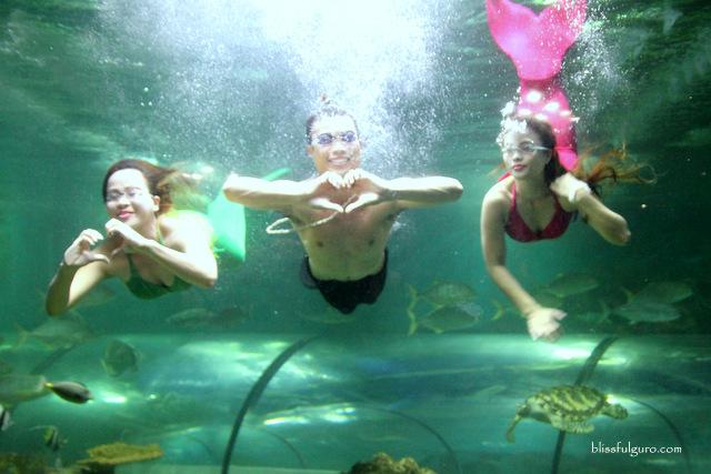 Boracay Mermaid Show