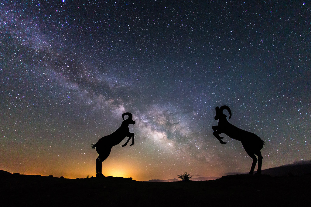Rams And The Milky Way Sculptures In Galleta Meadows
