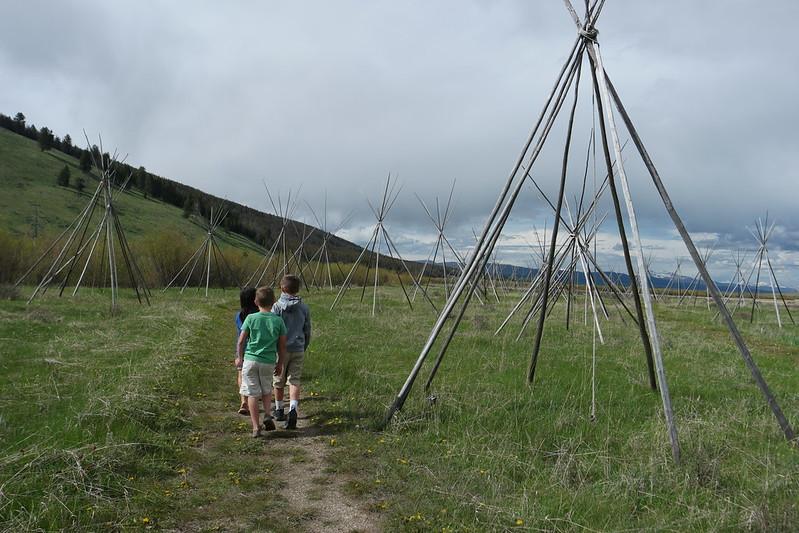 Blog Montana