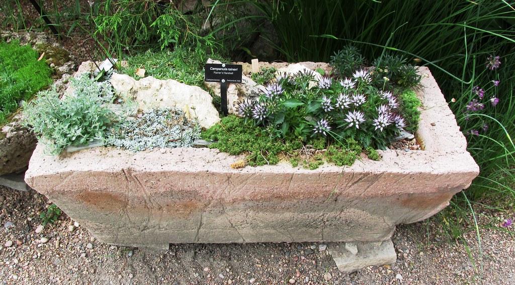 Rock Garden Troughs | By Brewbooks Rock Garden Troughs | By Brewbooks