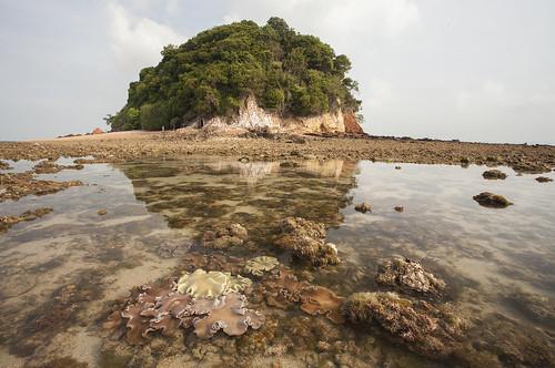 IMG_0271 Pulau Jong
