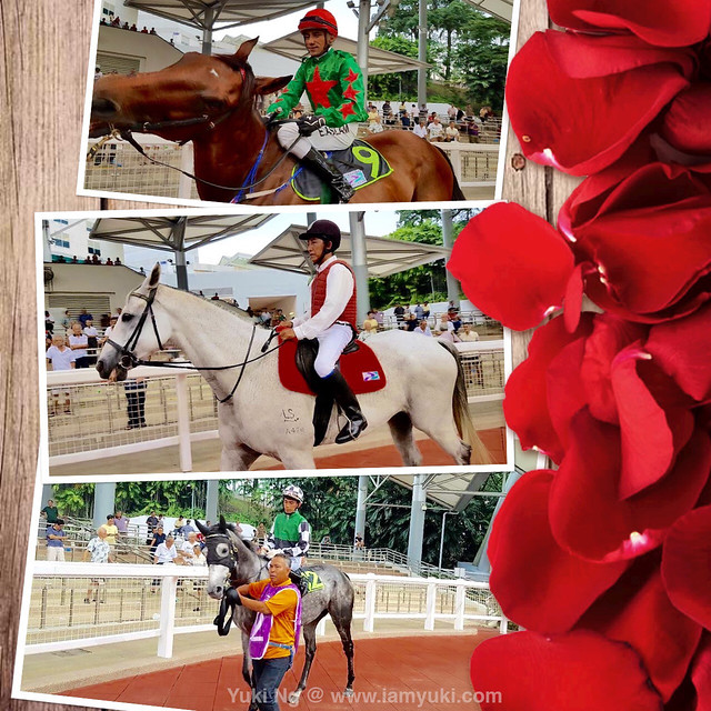 Emirates Singapore Derby 2016_20