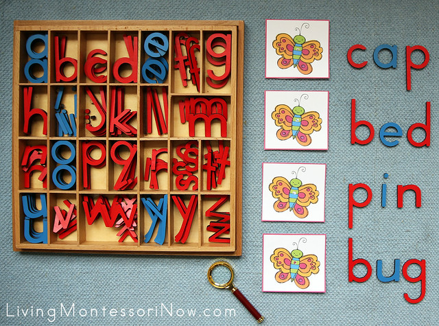 Butterfly Inspectors - Movable Alphabet CVC Pictures Spelling