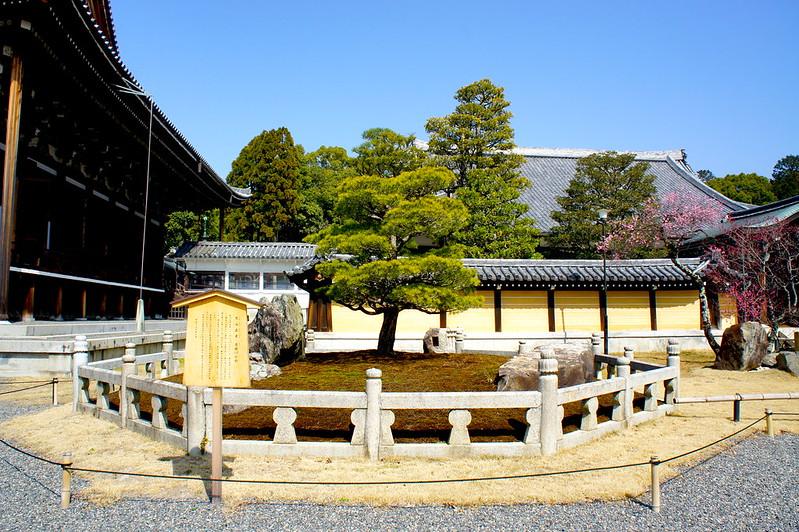 熊谷直実 鎧掛けの松/金戒光明寺(Konkai Komyo-ji Temple / Kyoto City) 2015/03/17