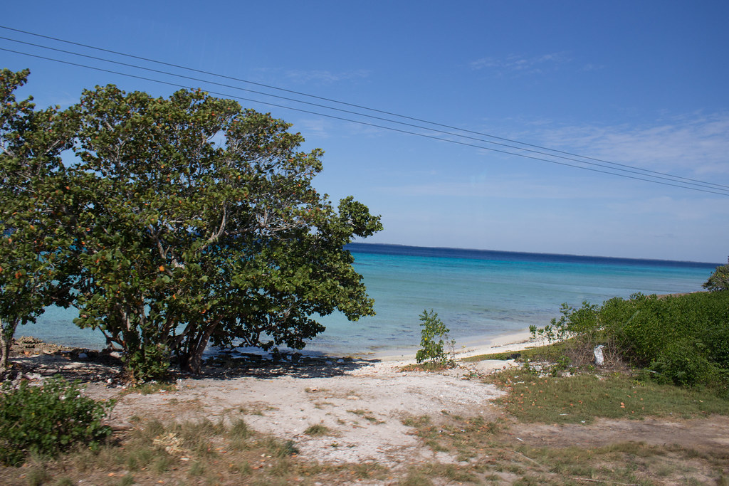 Sikojenlahti, Kuuba