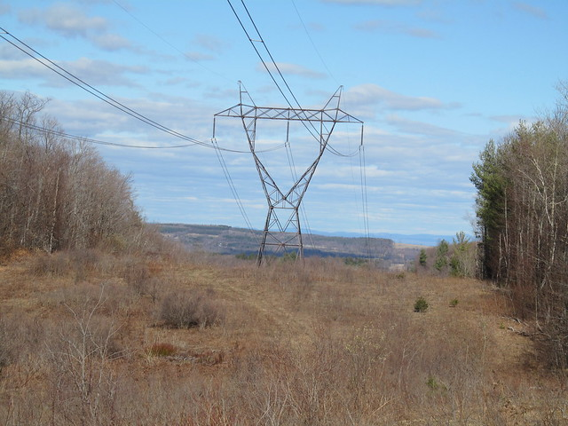 Power line cut