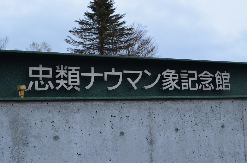 忠類 (1)